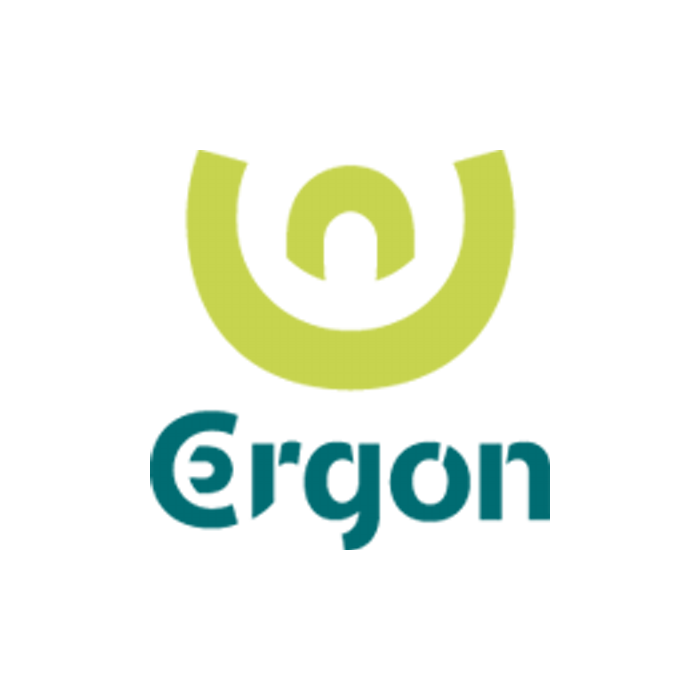 ergon 2